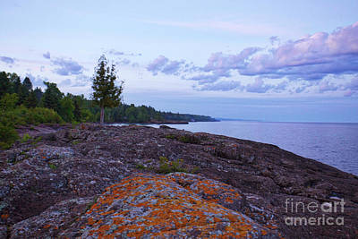 Photograph - The Rugged North Shore by Kate Purdy
