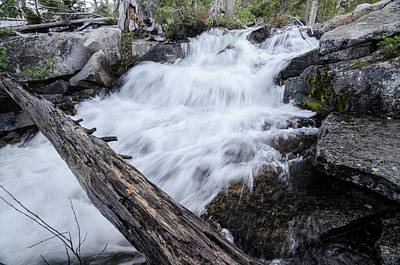 Photograph - The Rushing River by Margaret Pitcher