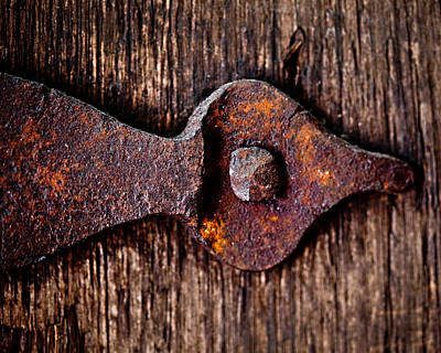 The Rusty Hinge Art Print by Lisa Russo
