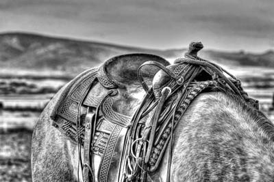 Photograph - The Saddle Bw  by Michael Damiani