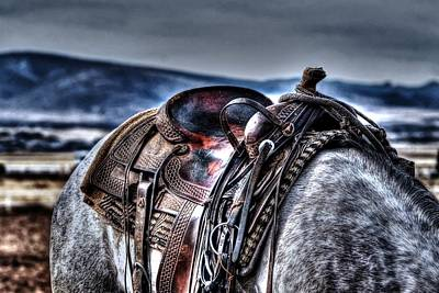 Photograph - The Saddle  by Michael Damiani