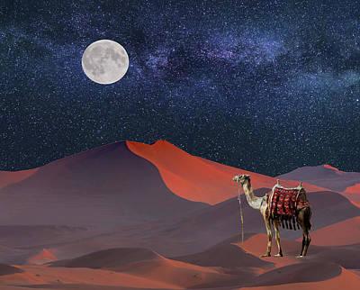 Digital Art - The Sahara Star Gazer by Glenn Holbrook