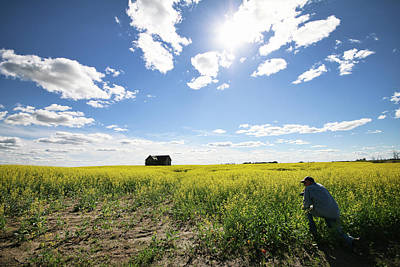 Photograph - The Saskatchewan Prairies by Ryan Crouse