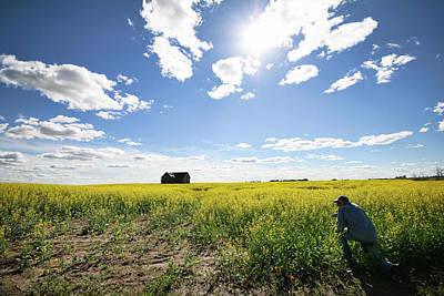 Photograph - The Saskatchewan Prairies by Ryan Crouse