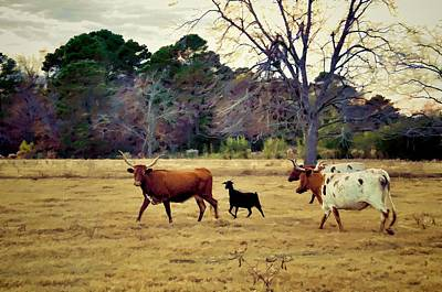 Pasture Scenes Digital Art - The Scapegoat by Jan Amiss Photography
