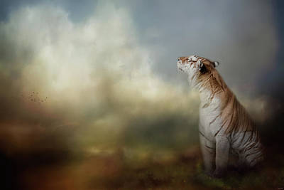 Photograph - The Scent Of The Storm by Jai Johnson