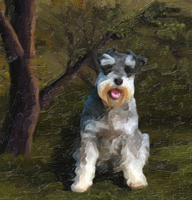 Puppies Mixed Media - The Schnauzer by Tilly Williams