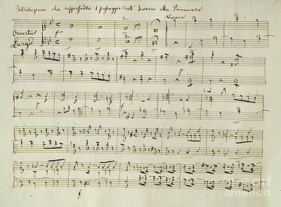 Music Score Drawing - The Score Of Spring by Joseph Haydn