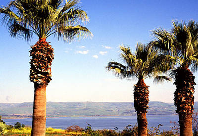 Sermon Photograph - The Sea Of Galilee From The Mount Of The Beatitudes by Thomas R Fletcher