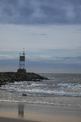 Photograph - The Seagull And The Beacon by Steve Gravano