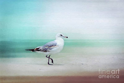 Dancing On The Beach Photograph - The Seagull Strut by Sharon McConnell