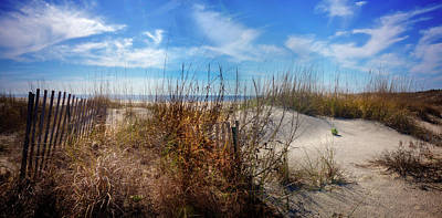 Photograph - The Seashore Dunes by Debra and Dave Vanderlaan