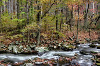 Fall Scenes Photograph - The Season Flows Along by Michael Eingle
