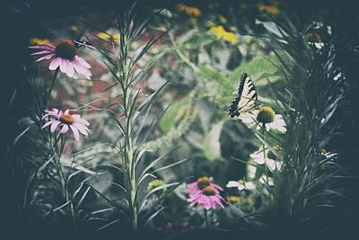 Pop Art - The Secret Garden by Janice Hayden