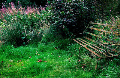 Park Benches Photograph - The Secret Garden by Warren Home Decor
