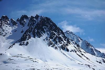 Alaskan Cruise Photograph - The Sentinel by Helen Carson
