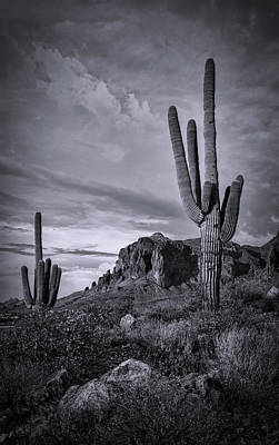 Art Print featuring the photograph The Sentinels Of The Supes In Black And White  by Saija Lehtonen