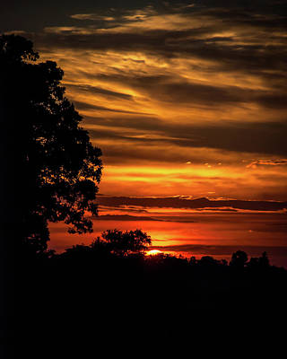 Art Print featuring the photograph The Setting Sun by Mark Dodd