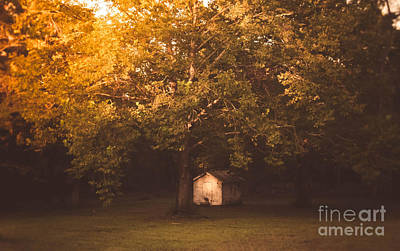Photograph - The Shack by Andrea Anderegg