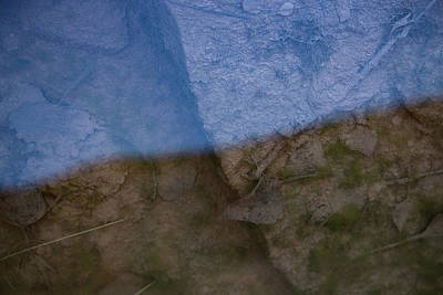 Photograph - The Shade And Shadow Of Decomposition by Deborah Hughes