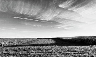 Cornfields Photograph - The Shadow by Wim Lanclus