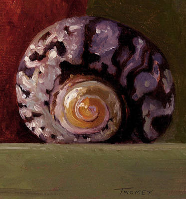 Painting - The Shape Of Nautilus, A Seashell by Catherine Twomey