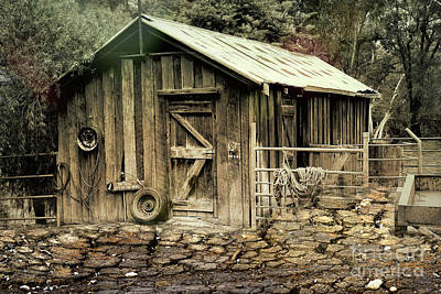 Photograph - The Shed At Bella Vista by Elaine Teague