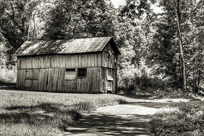 Photograph - The Shed At The End Of The Lane by Douglas Barnett