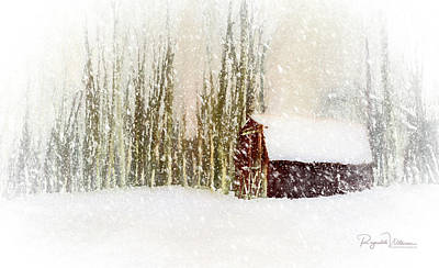 Photograph - The Shed In The Blizzard by Reynaldo Williams