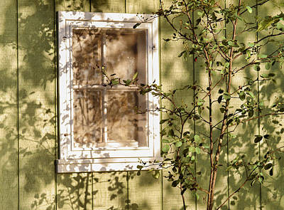 Photograph - The Shed Window by Bonnie Follett