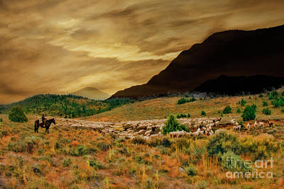 Photograph - The Sheepherder by Blake Richards
