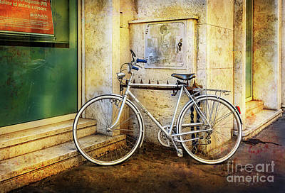 Photograph - The Shinning Elite Bicycle by Craig J Satterlee