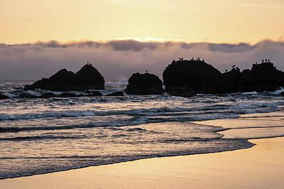 Photograph - The Shoreline by Steven Clark