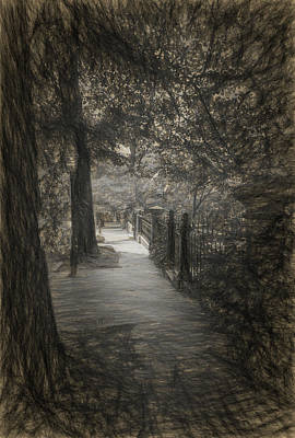 Drawing - The Sidewalk Trees by Thomas Logan