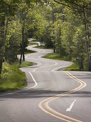 Art Print featuring the photograph The Signature Road by Barbara Smith