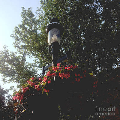 Frank J Casella Royalty-Free and Rights-Managed Images - The significance of a light post by Frank J Casella