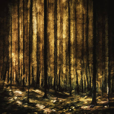 Panorama Digital Art - The Silent Woods by Scott Norris