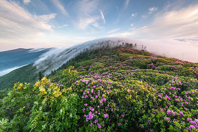Photograph - The Silky Embrace Of The Roan Highlands by Mark VanDyke