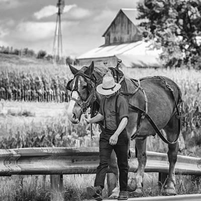 Cornfield Photograph - The Simple Life Bw by Steve Harrington