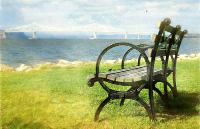 Park Benches Photograph - The Situation by Diana Angstadt