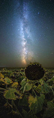 Photograph - The Sky Above  by Aaron J Groen