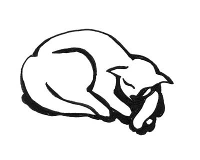 Art Print featuring the drawing The Sleeping Cat by Keith A Link