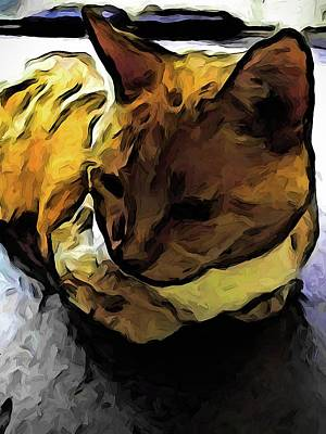Digital Art - The Sleeping Gold Cat With The Dark Shadow by Jackie VanO