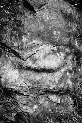 Photograph - The Sleeping Monolith by Yuri Lev