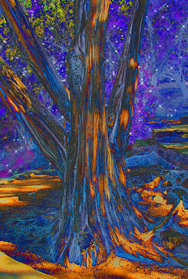 Digital Art - The Sleeping Tree by Wendy J St Christopher