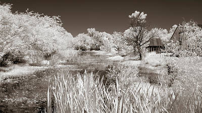 Photograph - The Slough In Sepia by James Barber