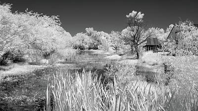 Photograph - The Slough by James Barber