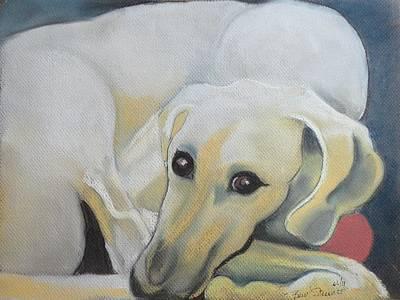 The Sloughi Sighthound Original