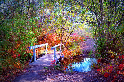 Whimsy Photograph - The Small Bridge At The Beginning Of Autumn by Tara Turner