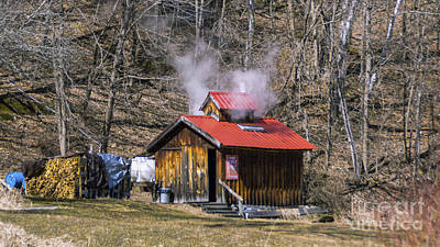 Photograph - The Smell Of Maple by Scenic Vermont Photography